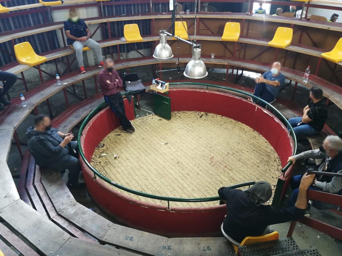 Lugar donde se llevaban a cabo las peleas de gallos / GC