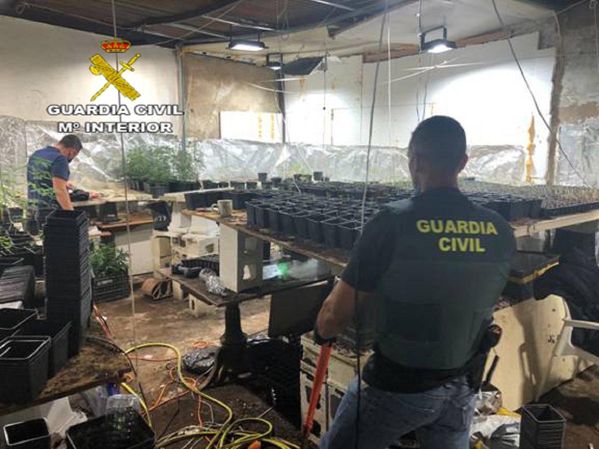 marihuana Carmona Guardia civil