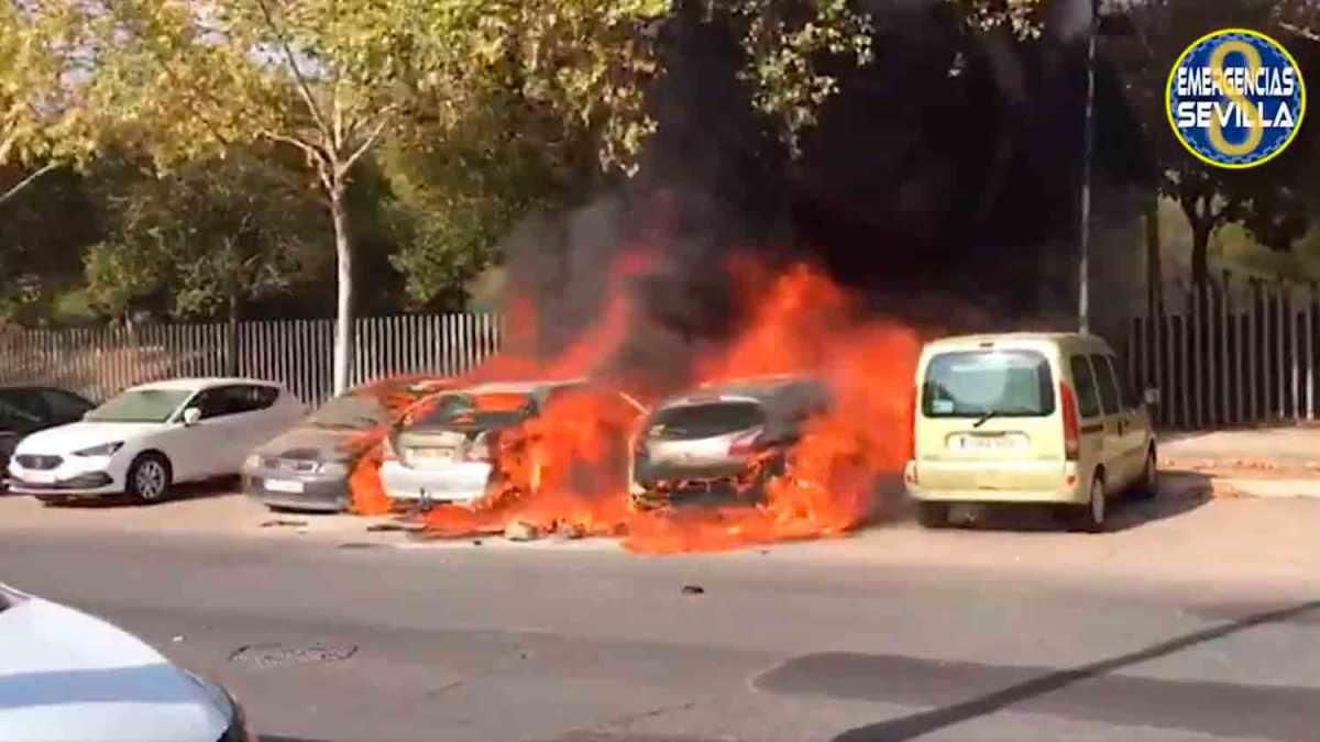 coches incendiados en pino montano