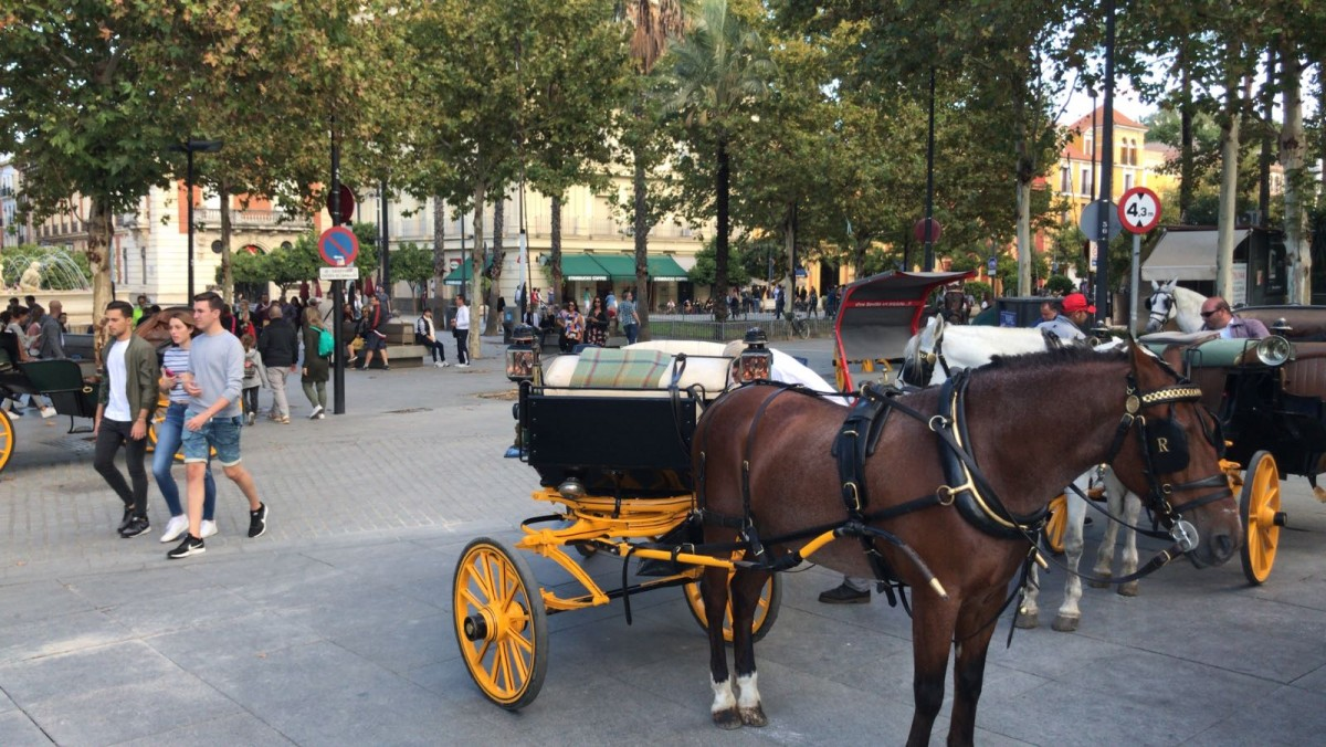 Coches de caballos ocupando zona peatonal de Puerta de Jerez.