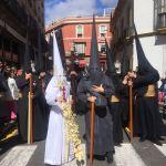 Galería de imágenes del Domingo de Ramos