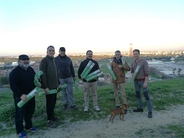 Miembros de Sevillasemueve, recientemente, replantando 1800 árboles en el Cerro del Carambolo