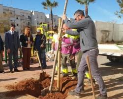 """El Ayuntamiento recoge en su Plan Director un incremento de la masa arbórea de Sevilla y lamenta """"las mentiras del PP y sus ataques a los técnicos de Parques y Jardines"""""""