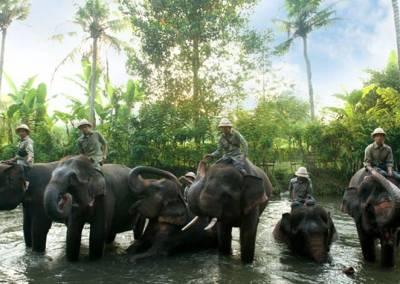 Sewa Mobil Di Bali - Bali Zoo Elphant & Guide