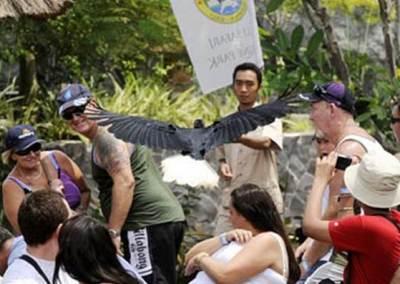 Bali Safari & Marine Park Harga Tiket Masuk Domestik 3