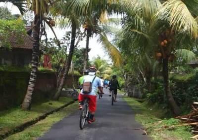 Cycling di Bali Jalur Kintamani Menuju Ubud 05