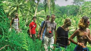 Trekking di Bali Jalur Tepi Sungai Ayung