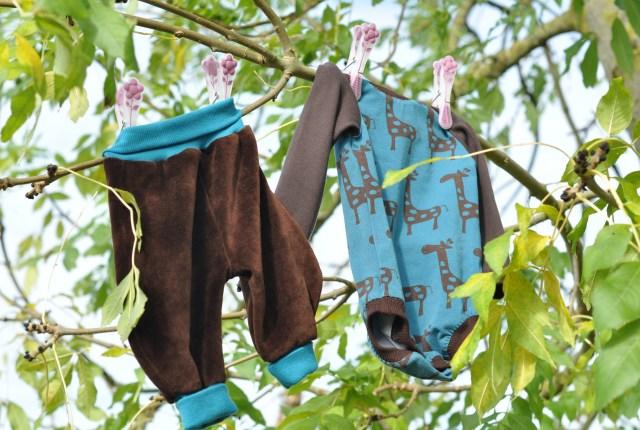 Giraffenkombi-im-Baum
