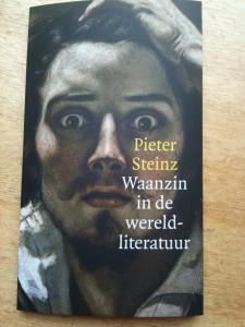 Pieter Steinz