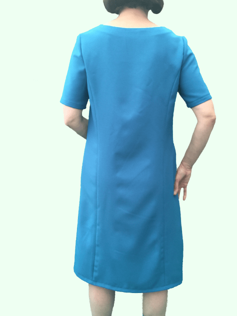 Blue Dress Back image