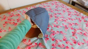 The hood is lined with a gorgeous cuddle fabric that looks like rose swirls.