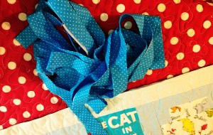 I chose a cornflower blue & white polka dot fabric.