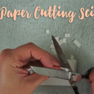 The Best Paper Cutting Scissors You Must Know About