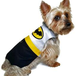 Darling DIY Dog Costumes to Sew