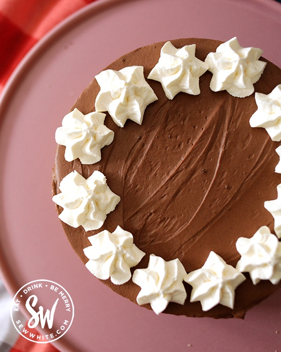 Chocolate cheesecake on a pink plate