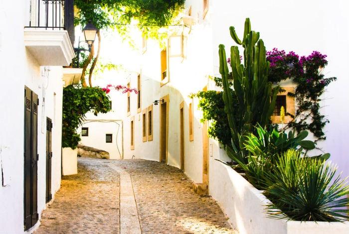 Disfruta de Ibiza como nunca de la mano de las mejores chicas de compañía