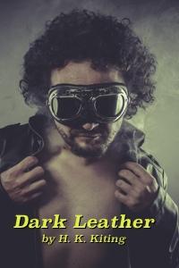 Dark Leather 200x300