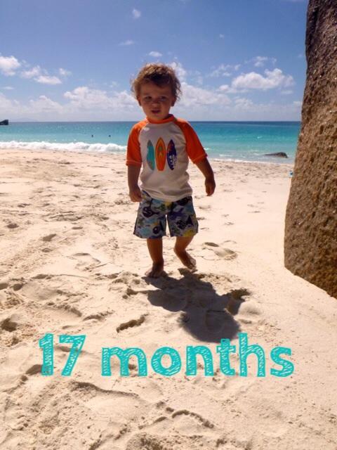 17 months