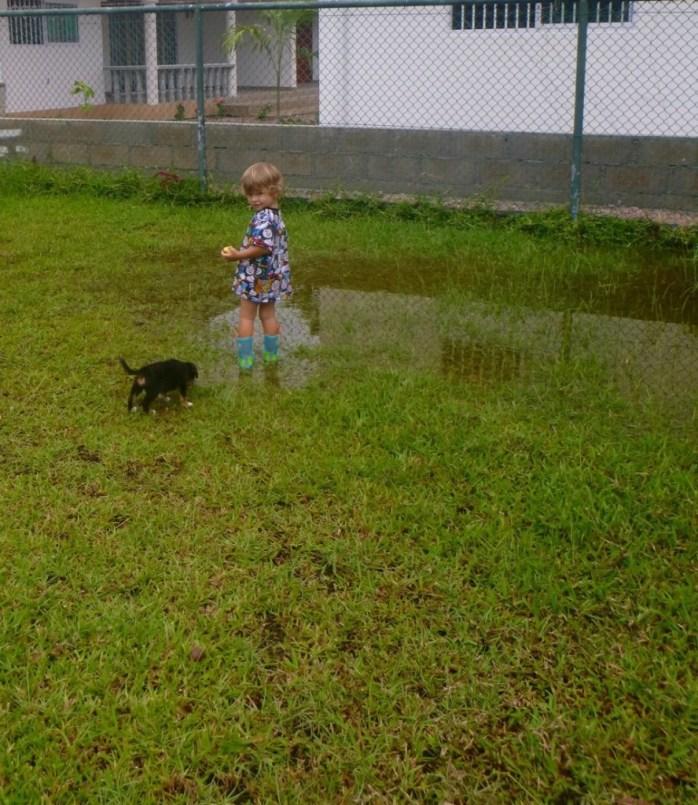 When it rains in Seychelles
