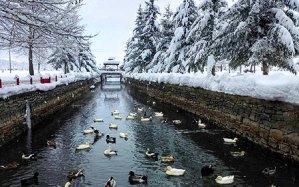 Kuğulu Park Kış