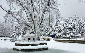 Kuğulu Park Karlar Altında