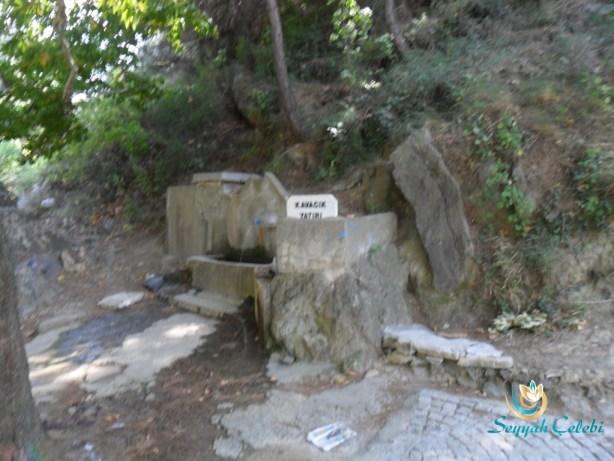 Misi Köyü Kavacık Yatırı