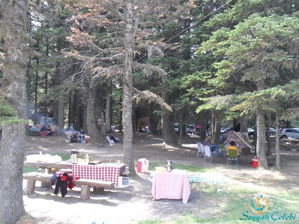 Uludağ Çobankaya Kamp ve Piknik