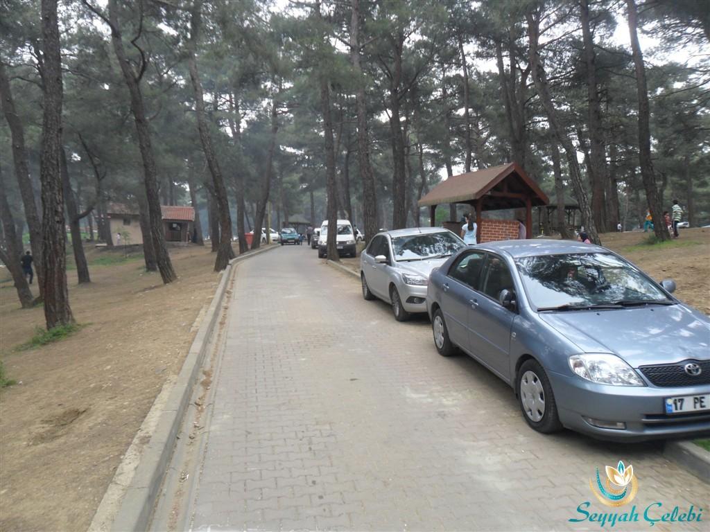 Bursa Atatürk Kent Ormanı Araç Park Etme