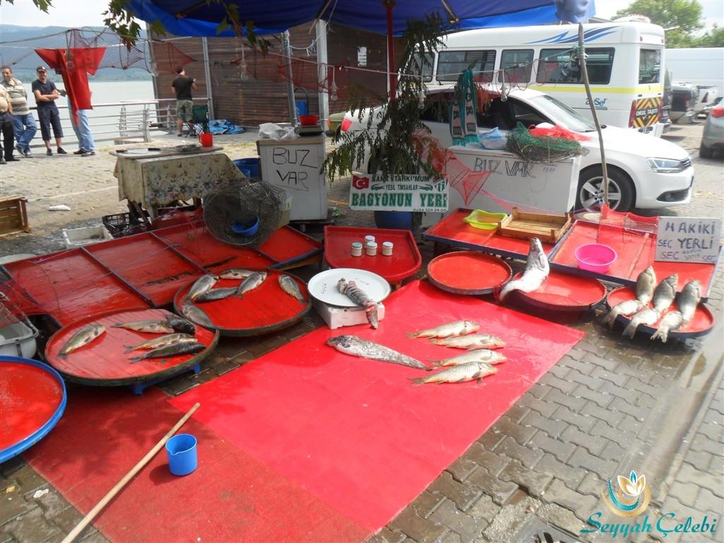Gölyazı Balıkçı Bagyonun Yeri