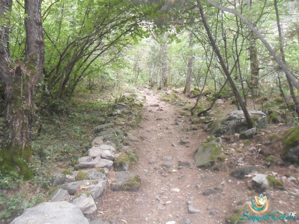 Kürekli Şelalesi Yürüme Yolu