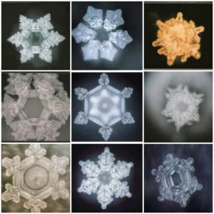 a907c7d08110aa1828d0b00a626e4b70--masaru-emoto-christmas-snowflakes