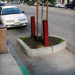Parking Lane Planters