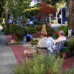 Street and Sidewalk Parks
