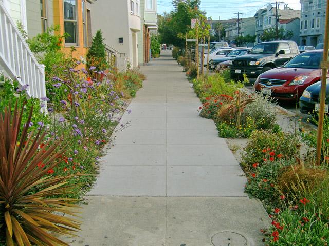 Neighborhood Residential Street
