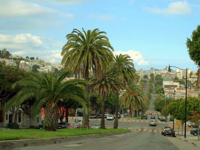 Dolores Street as an example of a parkway