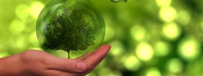 ISO 14001: TUTELA DELL'AMBIENTE E SOSTENIBILITÀ
