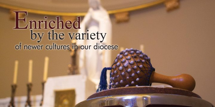 Enriched by the variety of newer cultures in our diocese