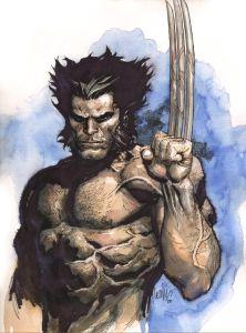 Wolverine-01