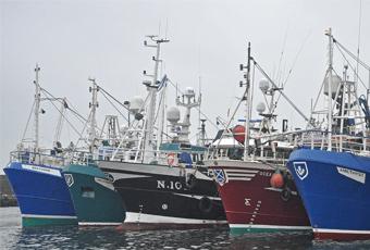 Sustainable Fisheries