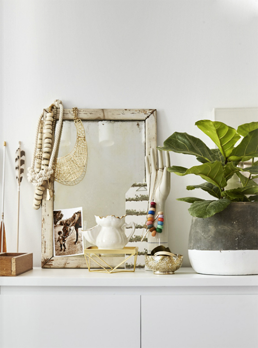 white home accessories and potted indoor plant / sfgirlbybay