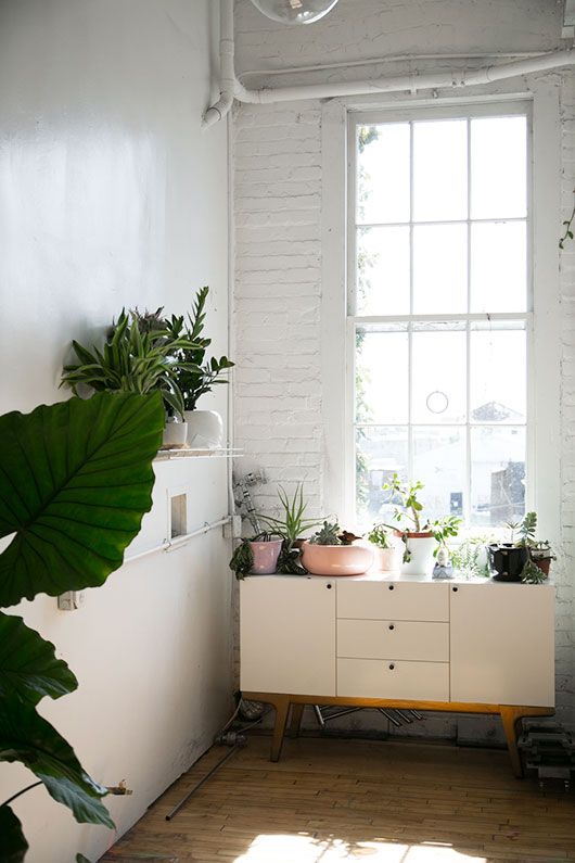 potted plants inside loft downtown los angeles / sfgirlbybay