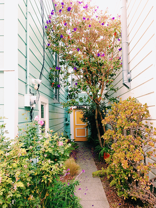 image of bright exterior paint inside Victoria Smith's book See San Francisco. / sfgirlbybay