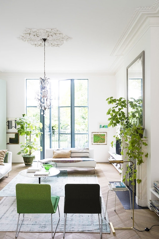 green and black chairs and indoor plants in modern victorian home. / sfgirlbybay
