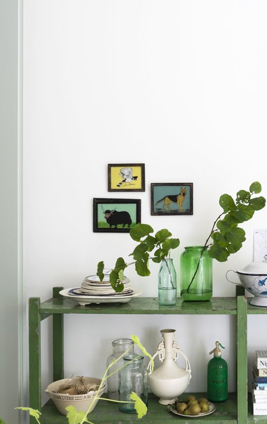 green open shelving with dishware and plants / sfgirlbybay