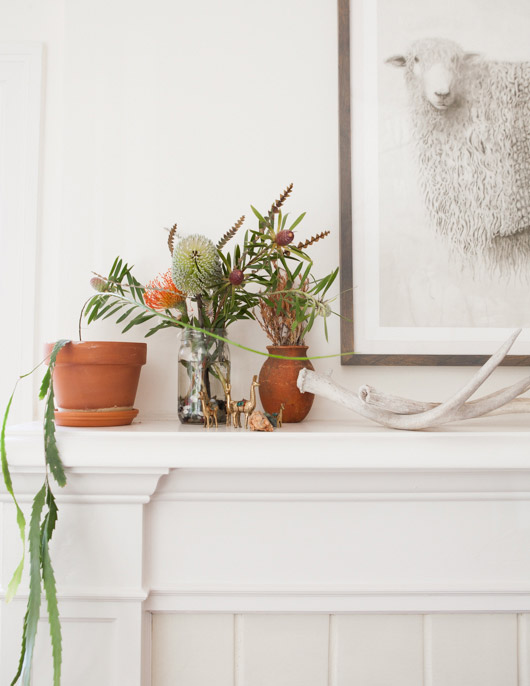 oakland home with white walls and potted houseplants on a white mantle. / sfgirlbybay