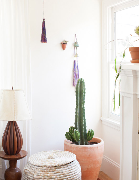 potted cacti in modern oakland, california home / sfgirlbybay