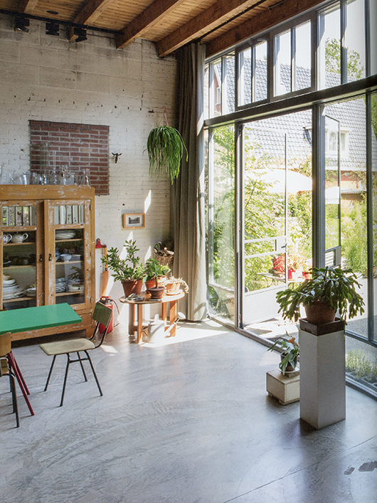 modern living room with hanging plants and plants on stands in front of glass wall with door / sfgirlbybay