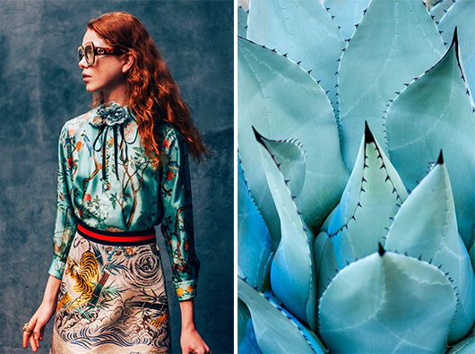 turquoise blouse and plant / sfgirlbybay