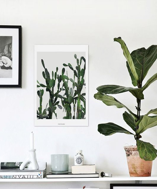 white wall and shelf with potted fiddle leaf fig and cactus art print / sfgirlbybay