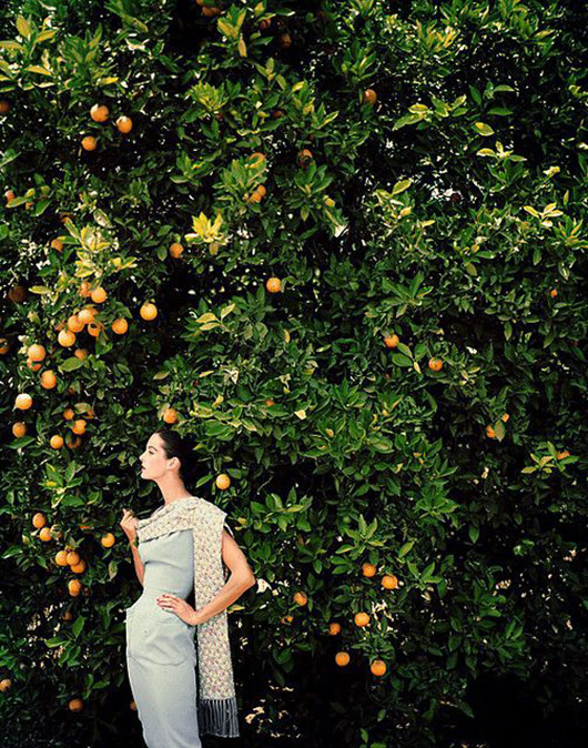 vintage model and orange tree. / sfgirlbybay